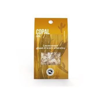 Copal, encens en résine, rituels et détente