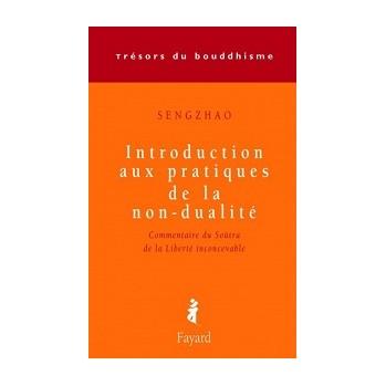 Livre Introduction aux pratiques de la non-dualité