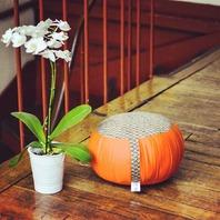 Lors de laméditation zazen, chaque personne présente des besoins différents. Selon la taille ou le poids de chacun, il est très important de trouver le zafu idéal afin d'être assis confortablement et ainsi avoir la posture adéquate .🧘♀️   Le zafu peut également être utilisé comme élément décoratif, par exemple, dans votre salon, en harmonie avec l'intérieur de votre maison. 😊🙏